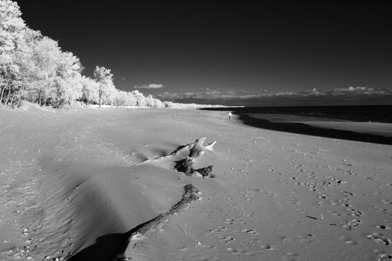 Long-Point-Beach-IR-CRW_1273-8-x-12