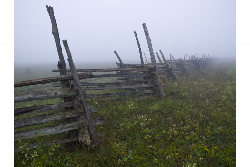 Manitoulin-Island-Wooden-fence__5595