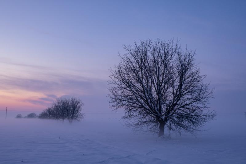 B.-Petrovec-20181216-Sneh-a-zapad-slnka_DSF0124
