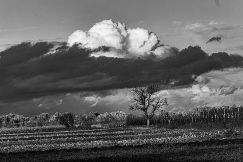 B.-Petrovec-20191104-Clouds-over-fields_DSF7234-BWII-e1572951192785