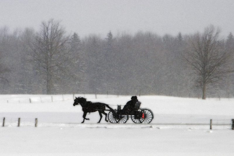 Mennonites-and-surrounding-area-Feb-18-2007-CRW_9433-LARGE-e1572951103754